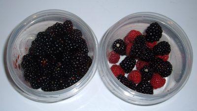 back berries and raspberries