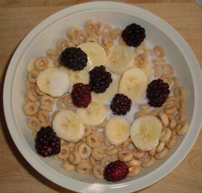day 43 breakfast