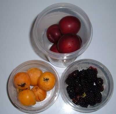 plums loquats blackberries