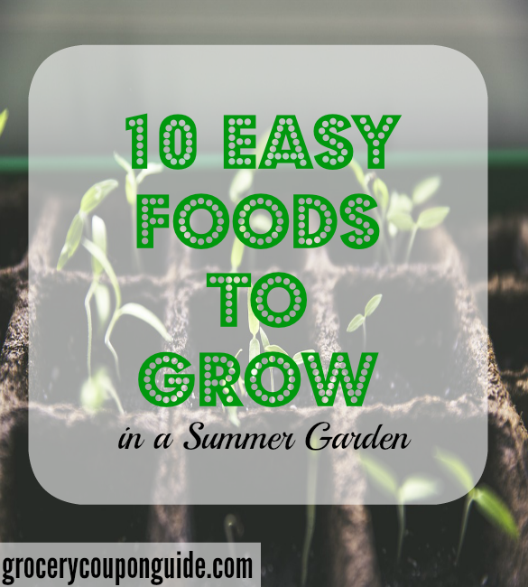 food to grow, summer garden, veggies to grow in a garden