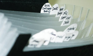 Organizing-Coupons4