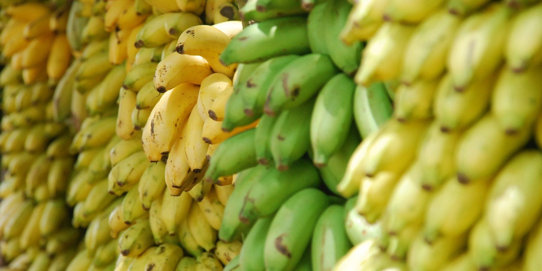 What to Buy at Trader Joe's: Bananas